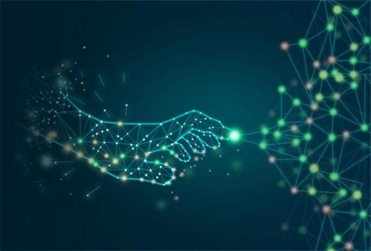 Digital Capability Framework